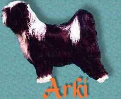 visit our Arki