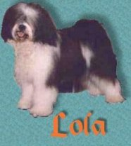 visit our Lola